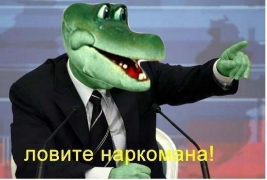 https://cs7.pikabu.ru/images/big_size_comm/2014-02_5/13932353977522.jpg