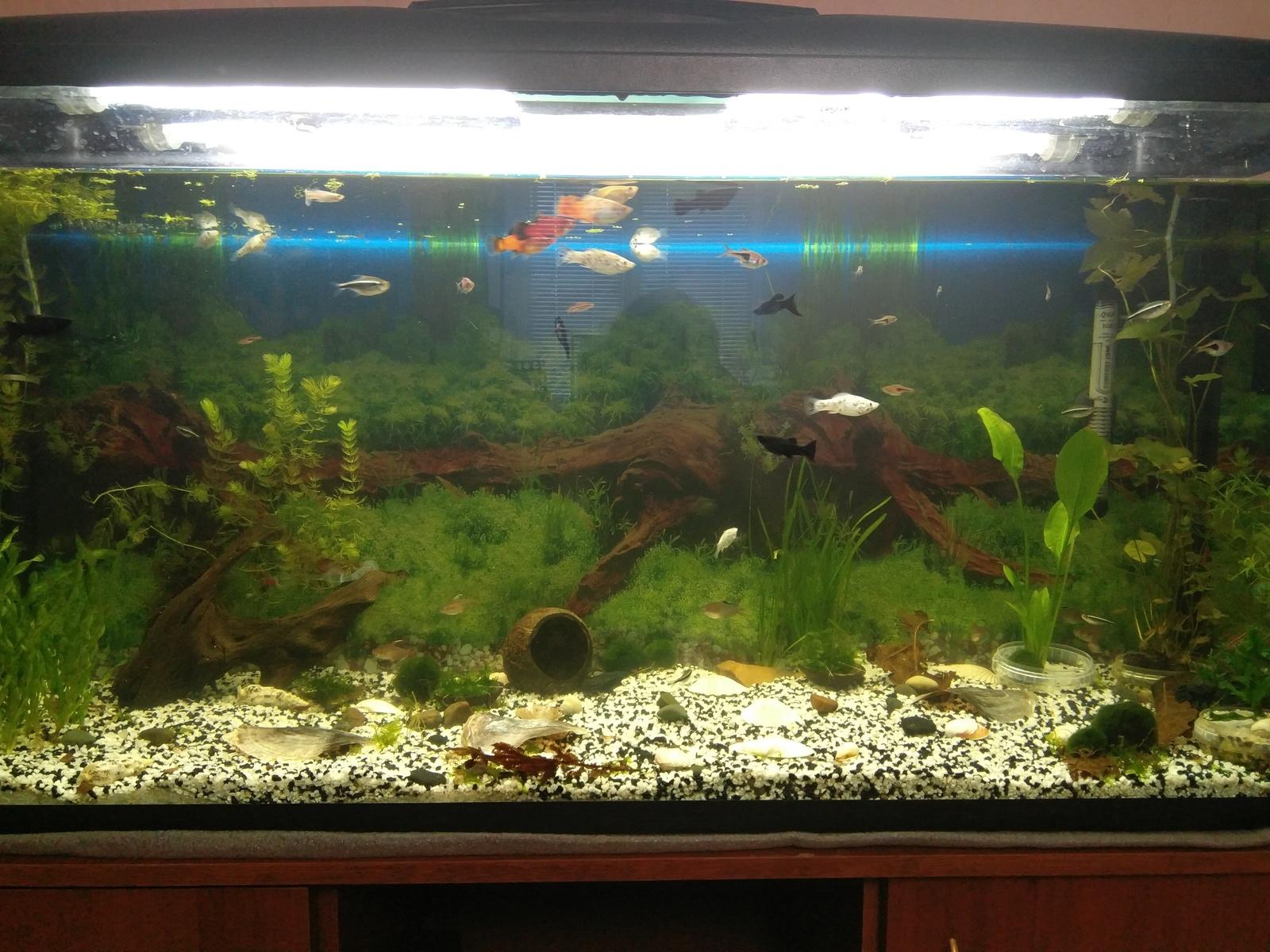 Поддон аквариума своими руками фото 17