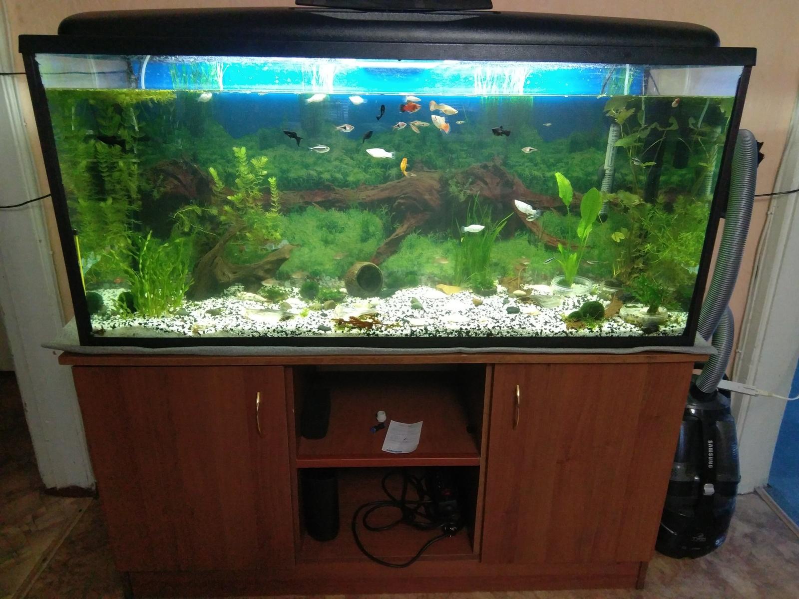 Поддон аквариума своими руками фото 719