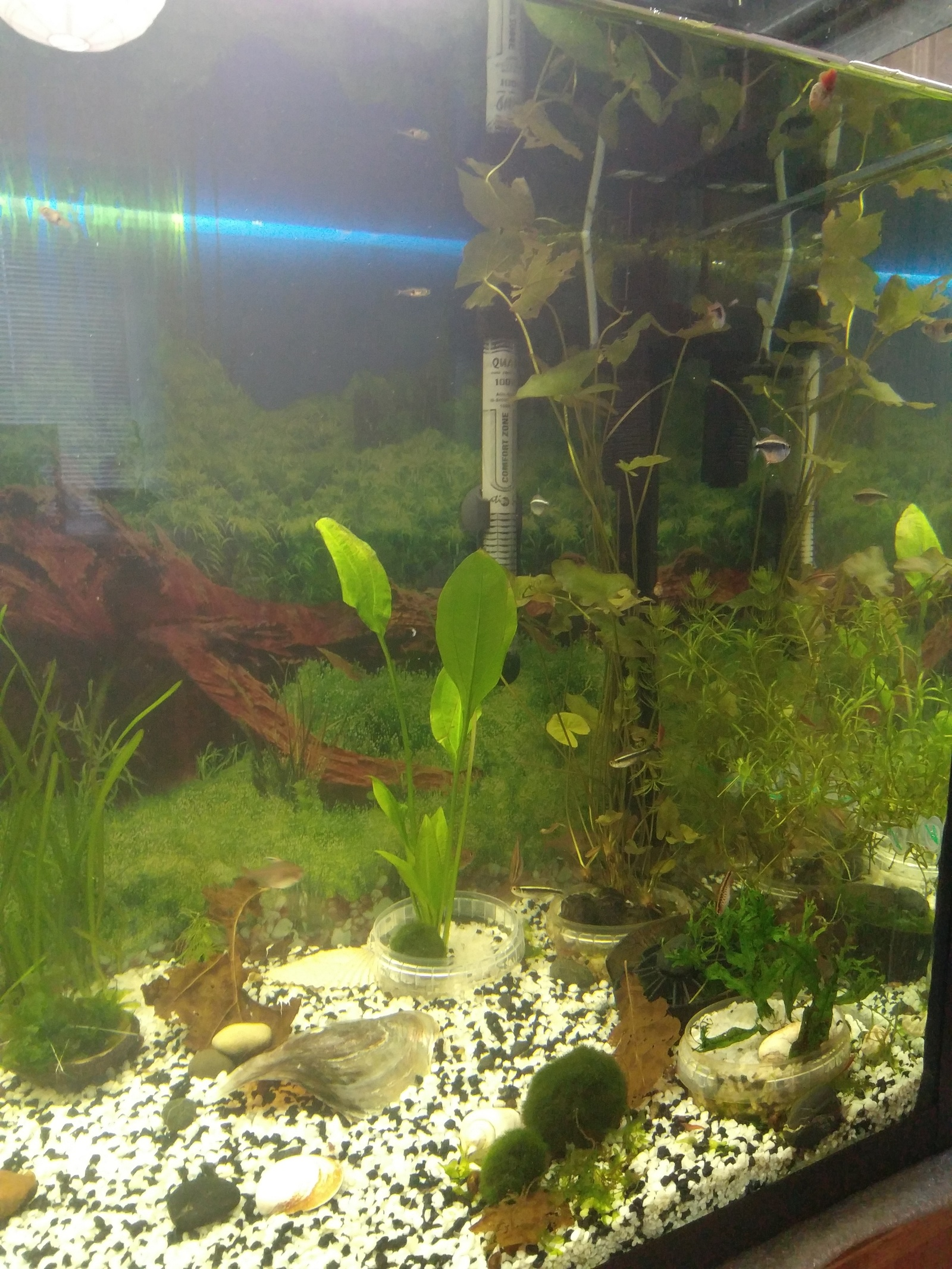 Поддон аквариума своими руками фото 270