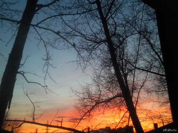 """В поддержку тега """"моё"""" Вот такой закат я наблюдаю каждый вечер из окна:)"""