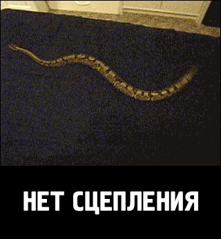 Змейка сломалась