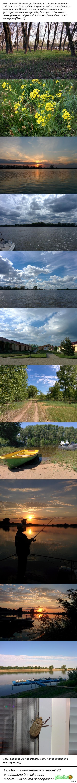 Мои фото (природа Астраханской области) Все с телефона