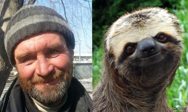 Добряк Серега,я нашел его двойника в животном мире Добряк ленивец.PaintMadSkillz