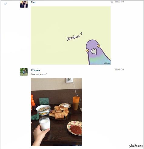 картинка голубя жрешь сеть