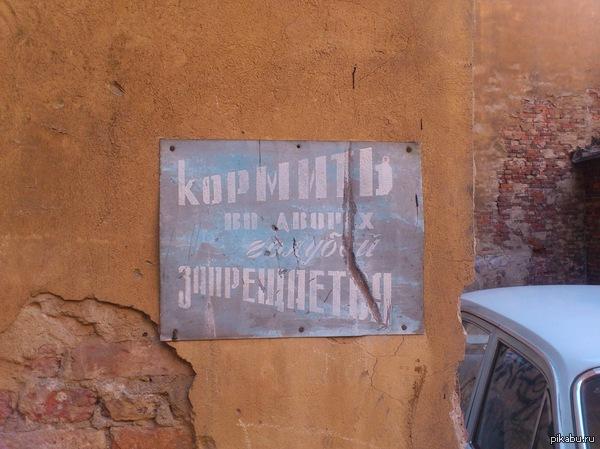 А знали ли вы что... Пасхалки во дворах Петербурга :)