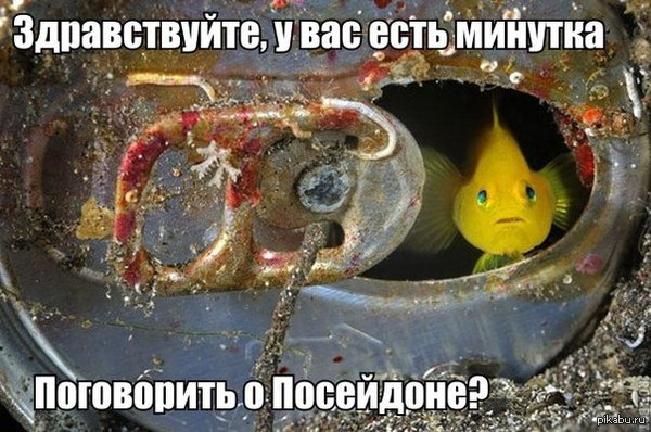 Рыба в банке.