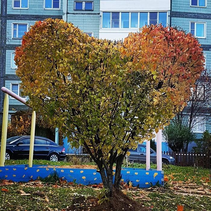 С любовью из Обнинска