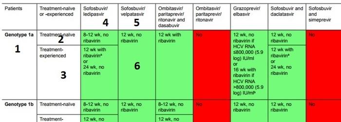 Немного о лечении Гепатита С. Гепатит с, HCV, Длиннопост