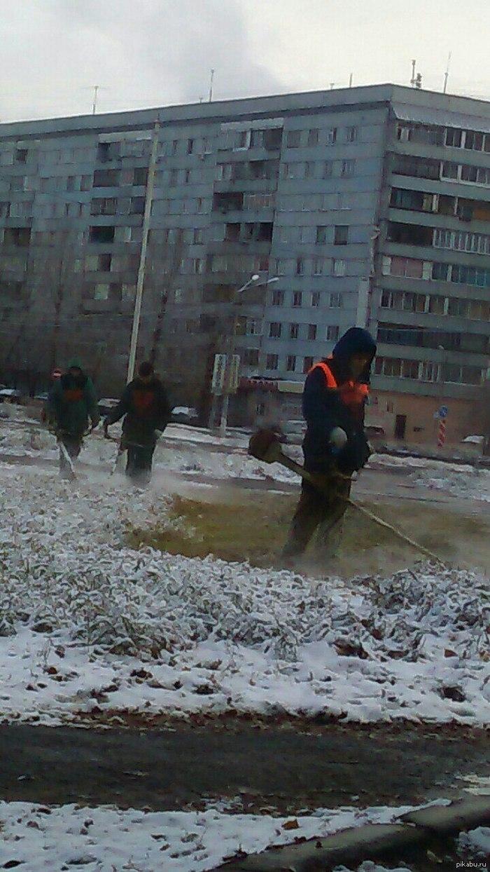 Омский косарь Омск, Косари, Юмор, Зима, Что происходит?, Видео, Длиннопост