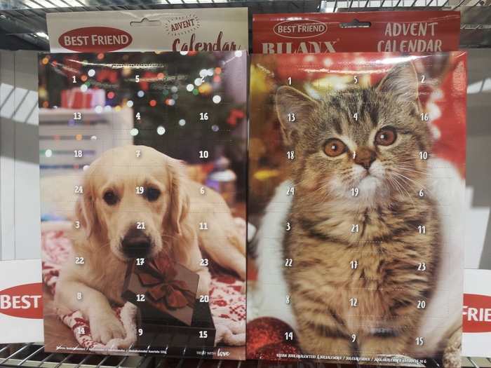 Для домашних любимцев христианского вероисповедания... Рождество, Питомец, Фотография, Календарь