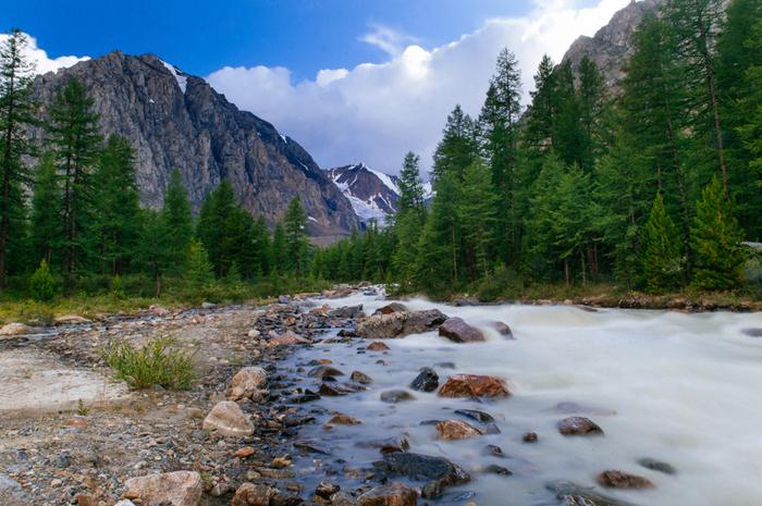 Горный Алтай. Альплагерь Актру Алтай, Горный Алтай, Ледники, Горы, Длиннопост