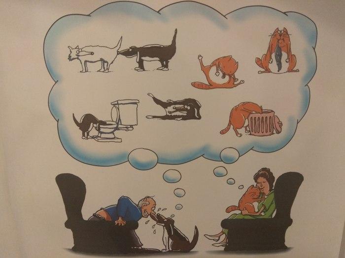 О любви к себе и своим питомцам. Постер, Питомец, Домашние животные, Мой хозяин идиот, Гигиена, Любовь к животным, Фу такими быть