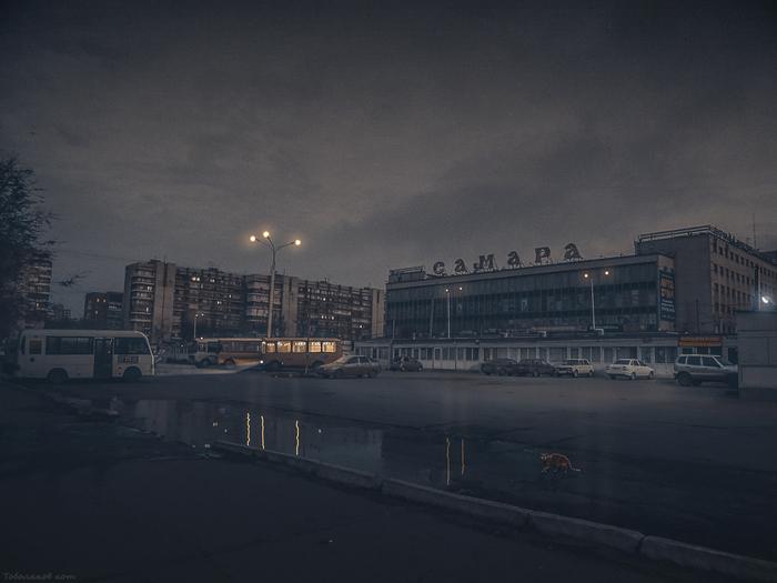 Пригородный автовокзал Автовокзал, Пазик, Рассвет, Кот