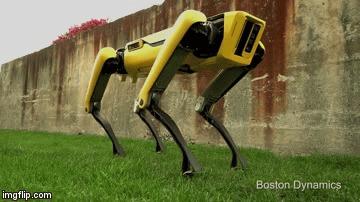 Смотрит прямо в твою кожаную душу Boston Dynamics, Кожаные ублюдки, Человечество, Вымирание, Терминатор, Робот, Лучший друг, Гифка, Видео