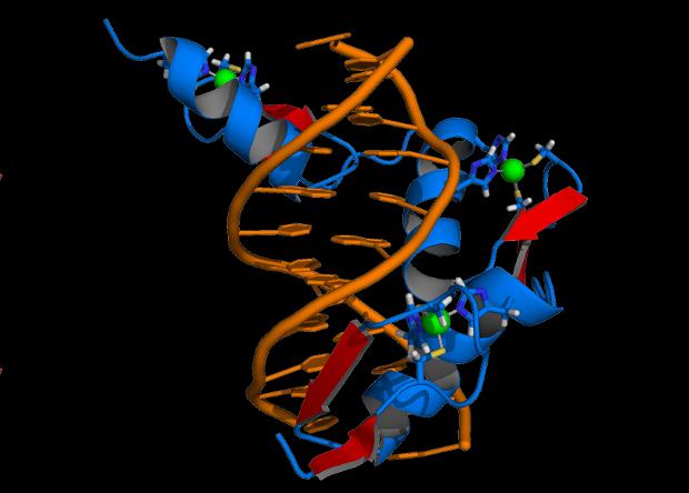 Геномное редактирование на живых людях начало давать результаты. Но не совсем объяснимые Наука, Новости, Медицина, Генетика, Редактирование геномов, Синдром Хантера