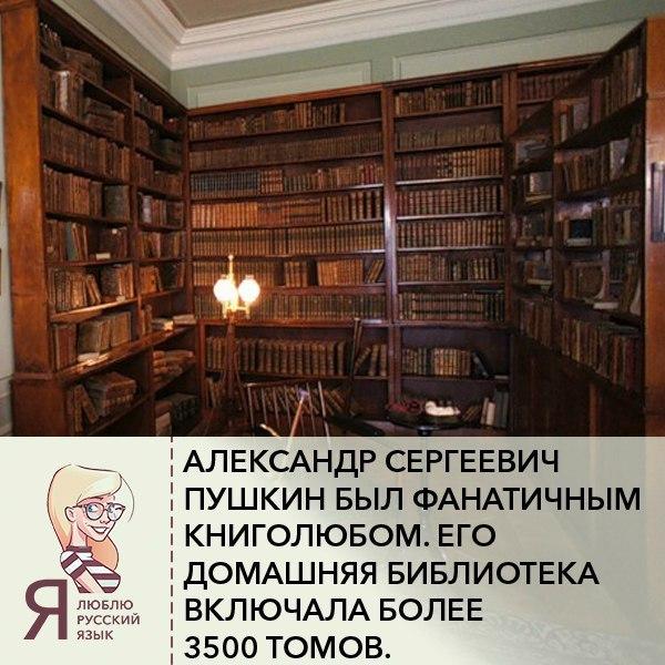 drochim-v-biblioteke-onlayn