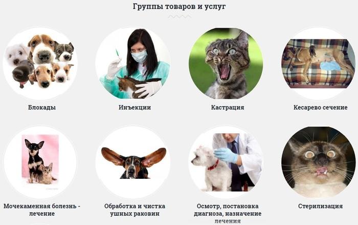 На сайте ветеринарной клиники нашего города