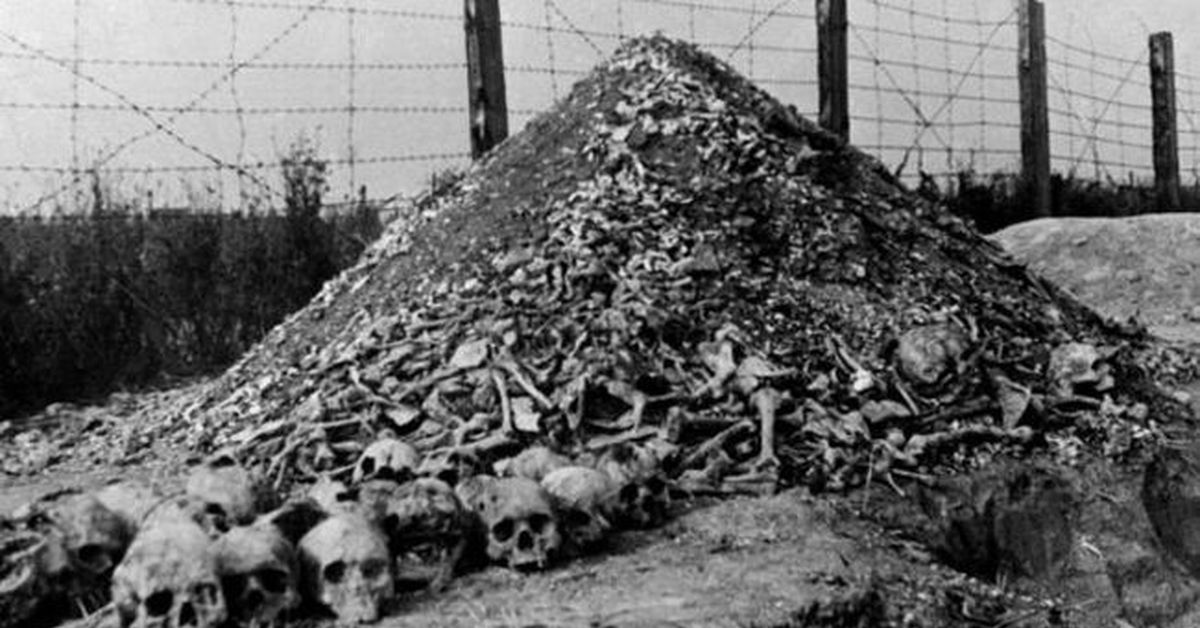pictures from the holocaust - 800×534
