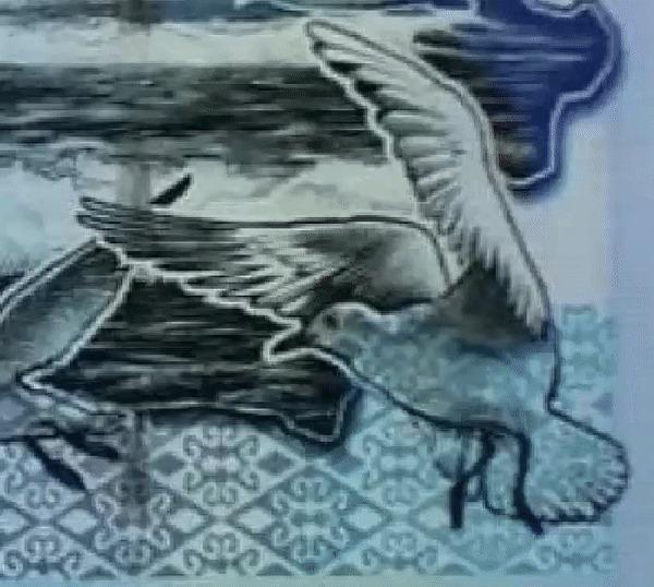 Автор «чайки» с купюры 500 Тенге опознал свою фотографию и хочет вознаграждение Числа, Тенге, Купюра, Чайки, Казахстан, Гифка, Длиннопост