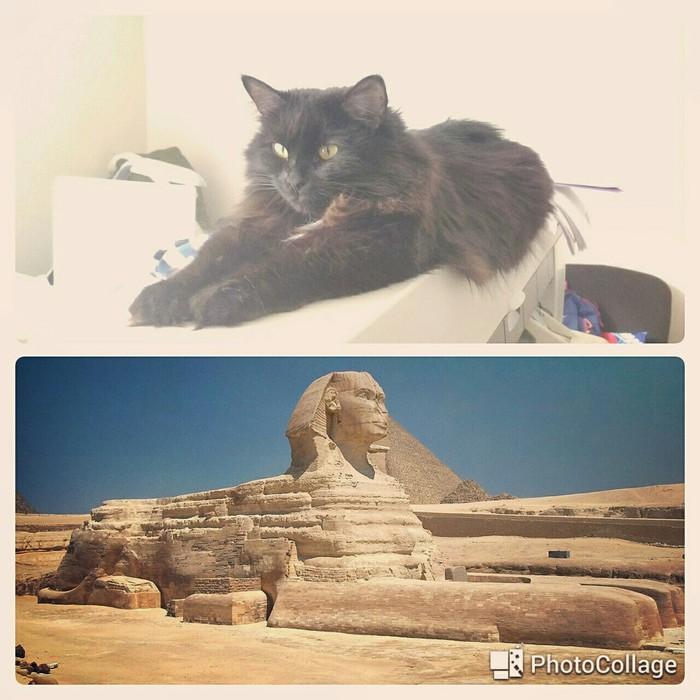 Пирамиды не хватает