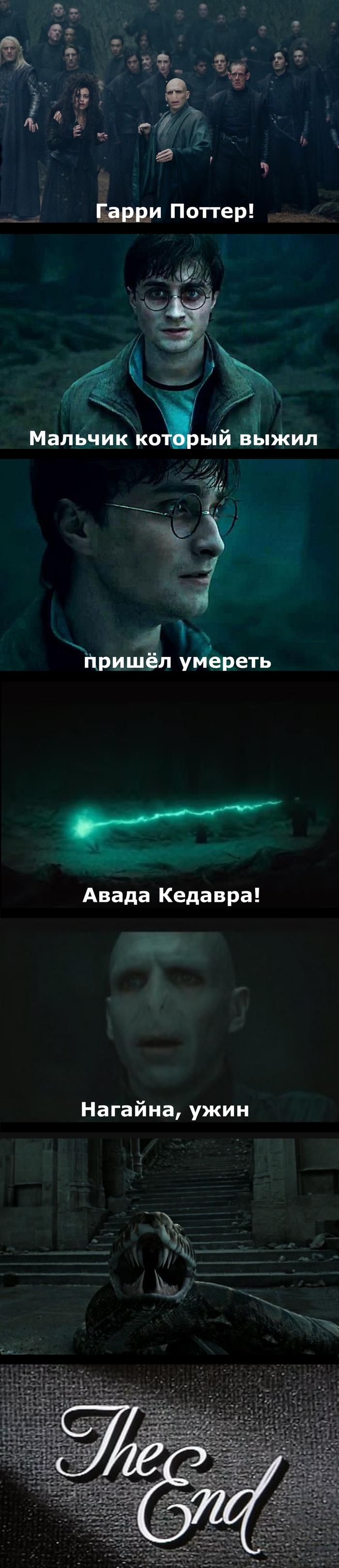 Гарри Поттер и альтернативная концовка Гарри Поттер, Если бы, Волан-Де-Морт, Имел, Мозг, Длиннопост