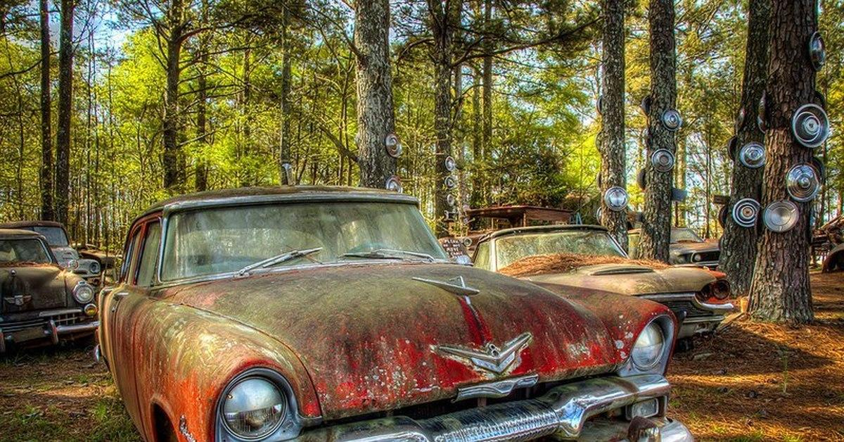 семье самые старые машины в мире фото каждой