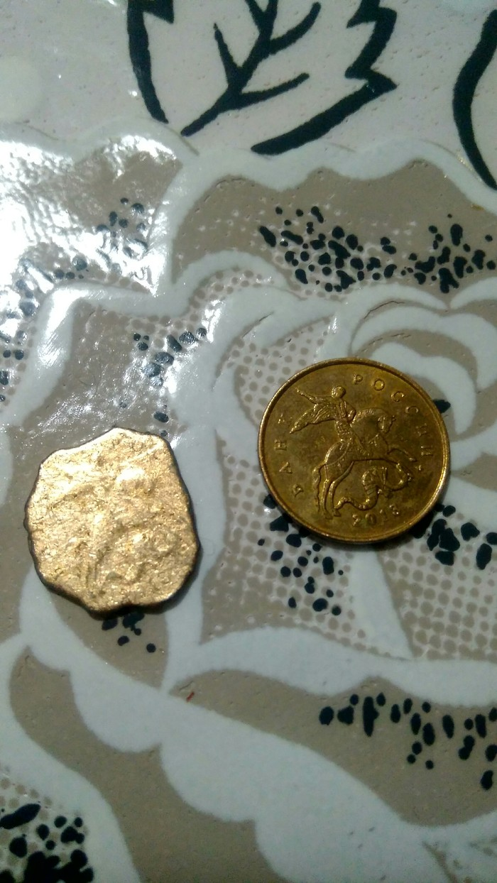 Монетка из утиного желудка Монета, Птицы, Длиннопост