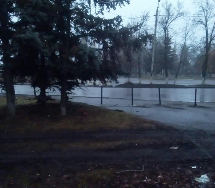 Обезьяны испортили лужайку. Водятел, Газон, Грязь