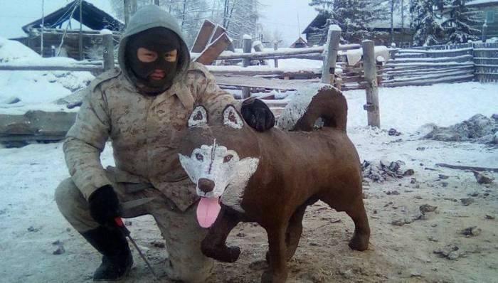 Хаски из какашки Собака, Навоз, Якутия, Хаски, Говно, Горячее, Холодное