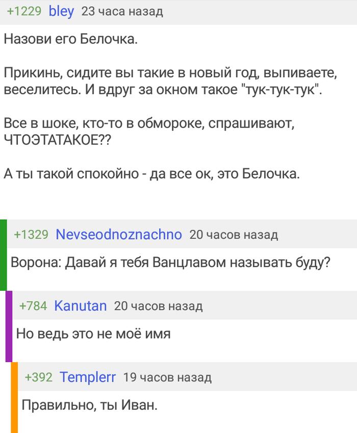 Кроссовер Комментарии на пикабу, Ворона, Не мое, Иван, Лига синего бобра
