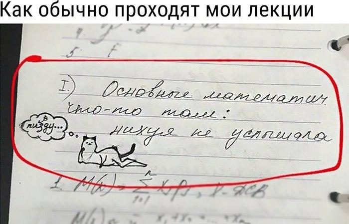Типичная лекция