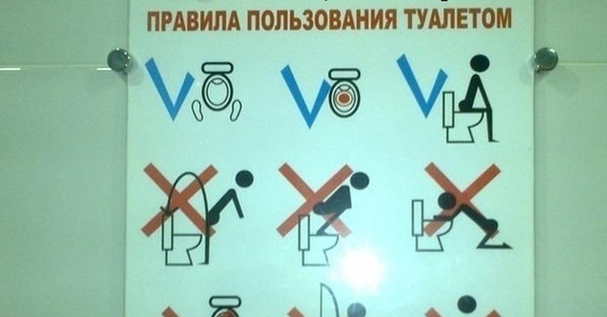Инструкции в туалете картинки
