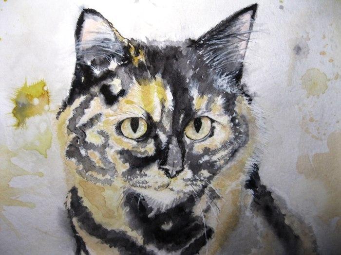 Конопушка Трехцветная кошка, Рисунок, Акварель, Длиннопост