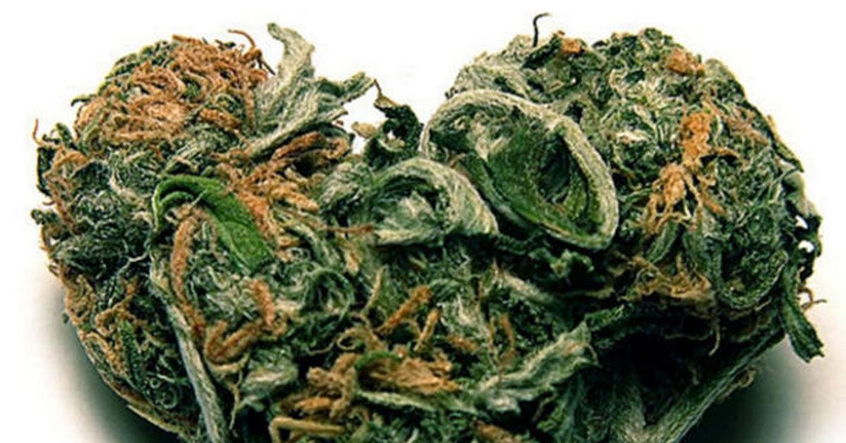 Секс под действием марихуаны трубка для курения марихуаны купить