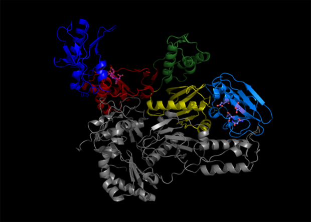 Компьютерное моделирование помогло разработать новый препарат против ВИЧ Наука, Новости, Вич, Спид, Лекарства, Компьютерное моделирование, Математика, Медцина