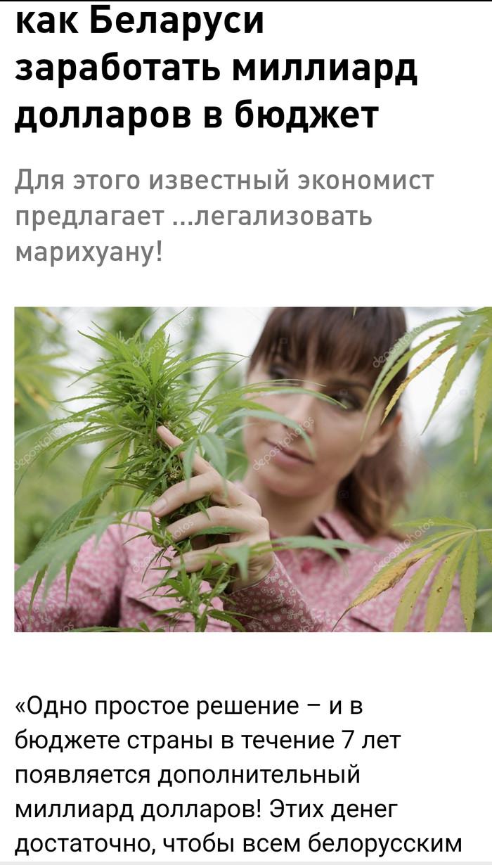 Марихуане в о беларуси закон украине в конопляных продажа семян