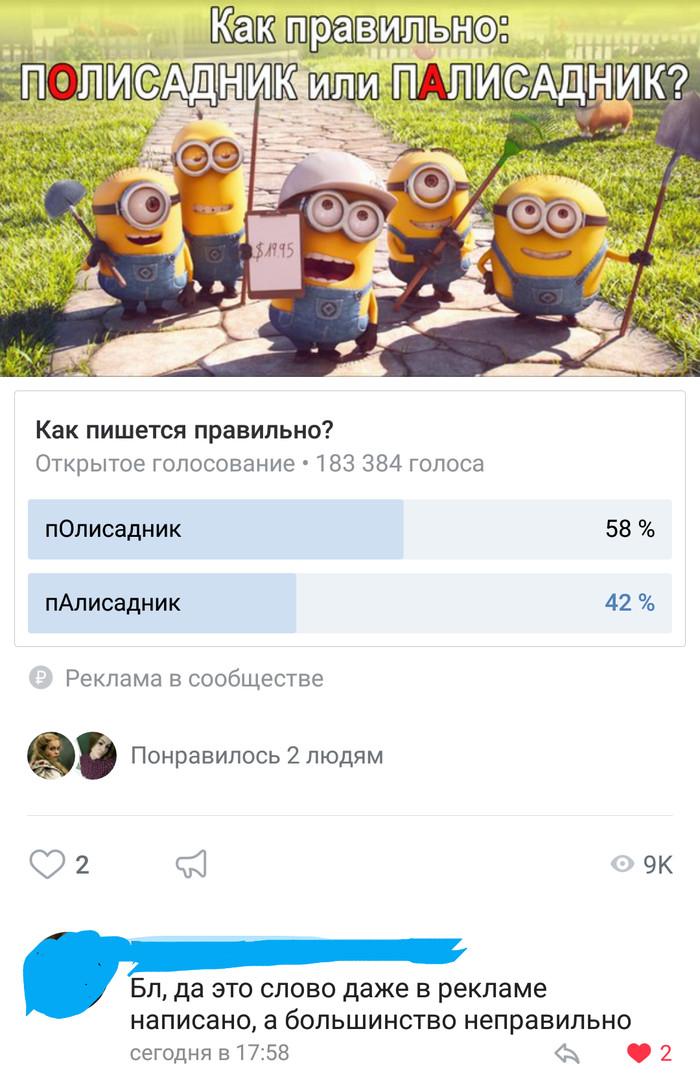 ПАлисадник или пОлисадник? ВКонтакте, Скриншот, Комментарии, Палисадник, Реклама, Миньоны, Длиннопост
