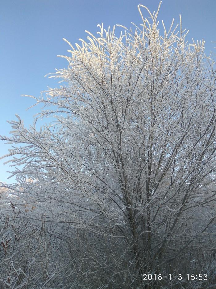 Для тех, кому в этом году не повезло с зимой (фотопост). Фотография, Парк, Длиннопост, Башкортостан, Зима, Снег, Иней