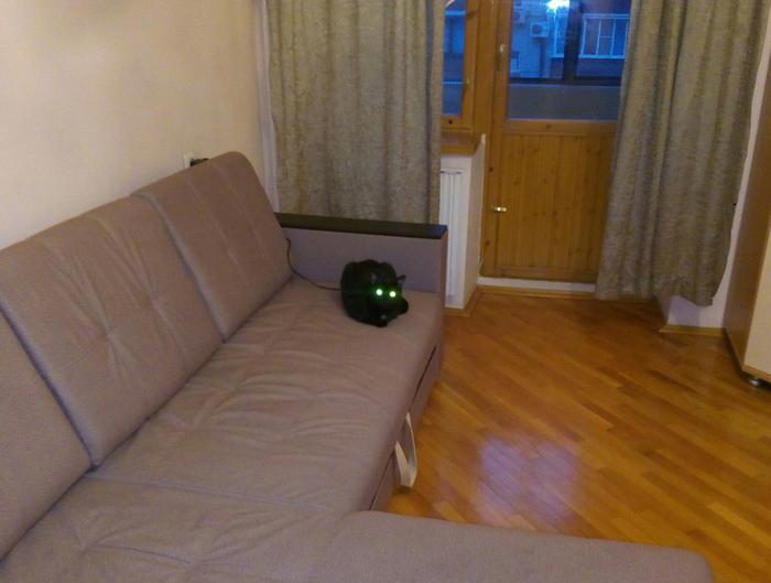 Поставил кошку на зарядку
