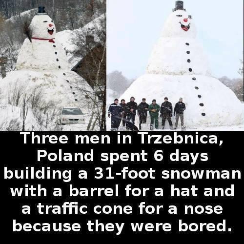 Потому что скучно Снеговик, Скука, Поляки