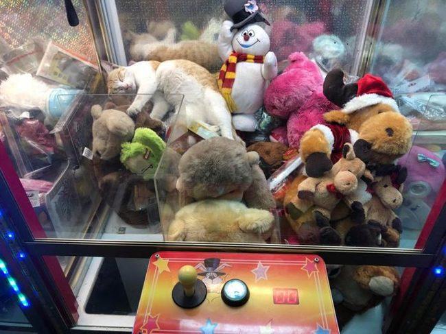 Игровые автоматы с игрушками как достают играть казино в игровые автоматы