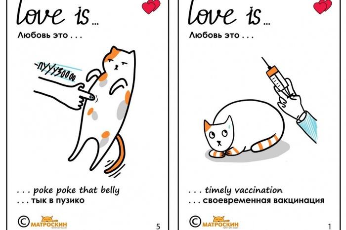 В пермском приюте «Матроскин» нарисовали валентинки про котов в стиле Love is… Приют Матроскин, Валентинка, Love is, Арт, Александра Пономарева, Длиннопост, Кот