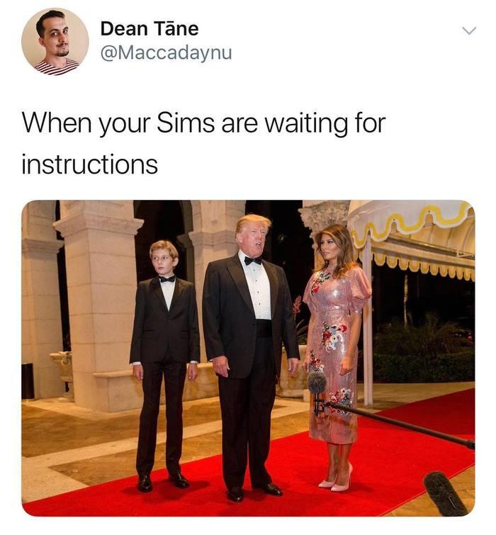 Когда твои Симы ждут указаний