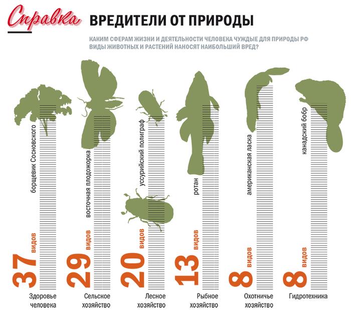 Нашествие чужаков. Природа России, Экосистема, Интернет, Длиннопост