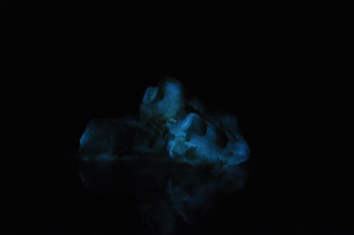 Светящиеся креветки Суши, Креветки, Биолюминесценция, Странности