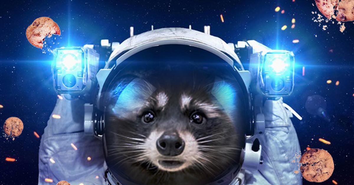 картинки животные в космосе академике лихачеве