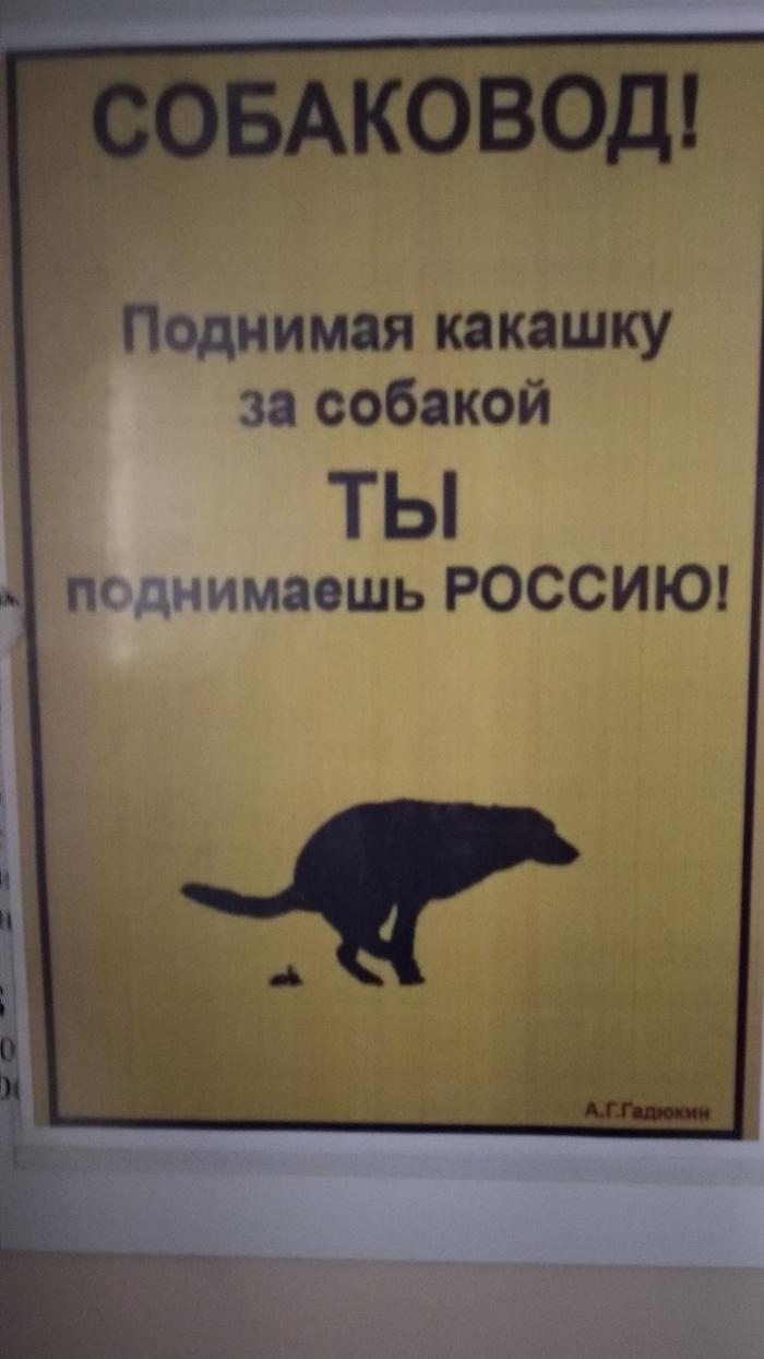 Поднять Россию не так и сложно.... Прикол, Собака, Россия