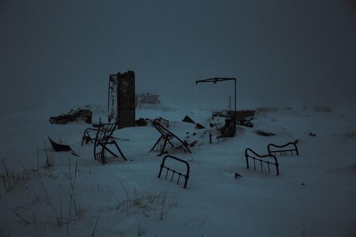 Зима и воля