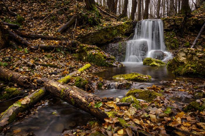 Безымянный водопад на притоке реки Серёны Водопад, Река Серёна, Калужская область, Козельский район, Калуга